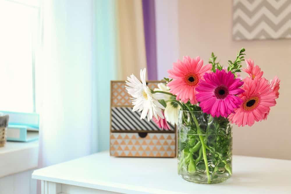 les meilleures plantes d 39 int rieur pour nettoyer l 39 air dans votre maison. Black Bedroom Furniture Sets. Home Design Ideas