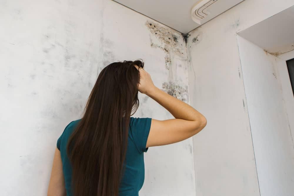 moisissures sur les murs comment en venir bout toutes les techniques. Black Bedroom Furniture Sets. Home Design Ideas