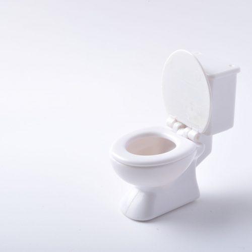 toilettes propres