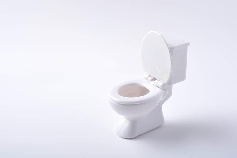 Toilettes toujours propres? C\'est possible grâce à ce guide