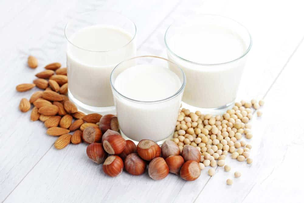 lait vegetal