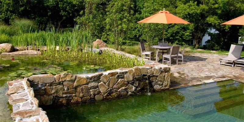 avoir une piscine naturelle chez soi avantages et inconv nients. Black Bedroom Furniture Sets. Home Design Ideas