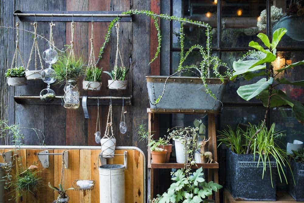 conseils et id es pour cr er un jardin vertical chez soi. Black Bedroom Furniture Sets. Home Design Ideas