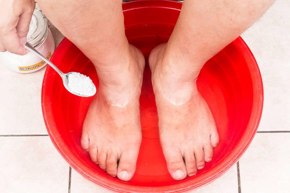 bicarbonate pied