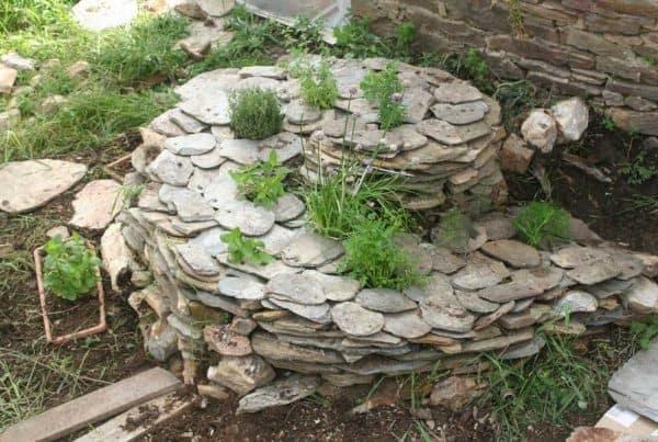 spirale herbe