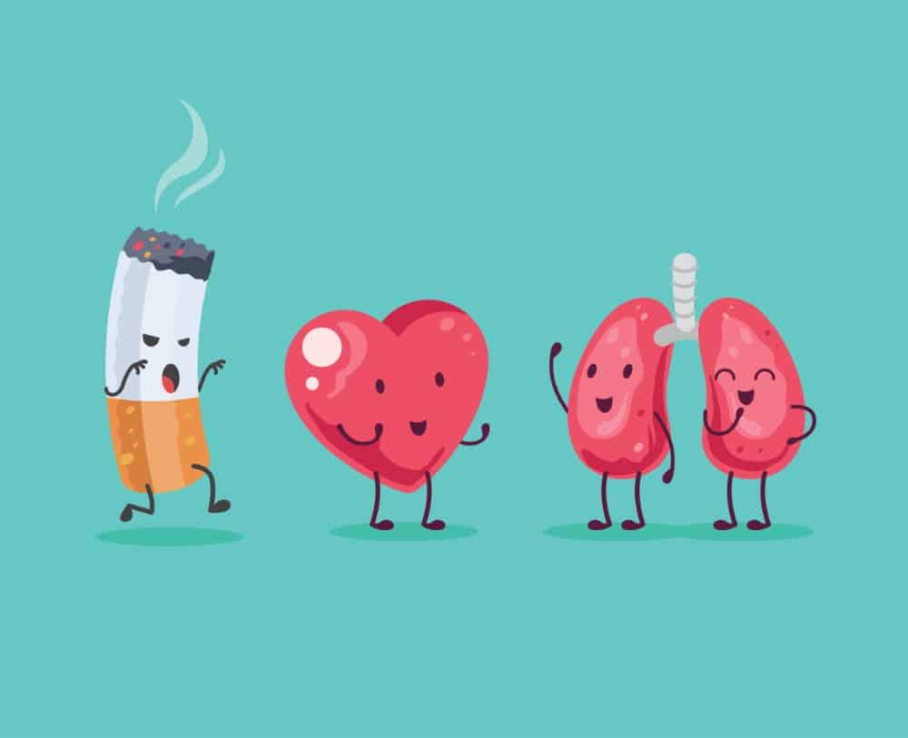 vie sans tabac